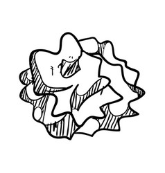 crumpled paper ball doodle vector image