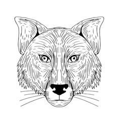 Fox head front drawing vector