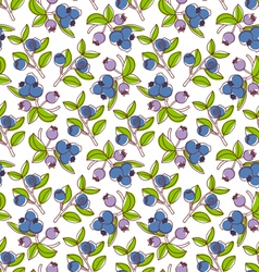 Blueberries pattern vector image