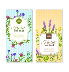 Herbs And Wild Flowers Banners vector image vector image
