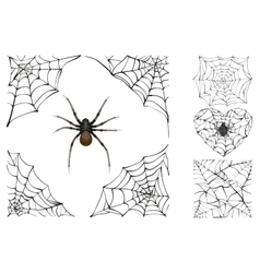 Web and poisonous spider set halloween accessory vector