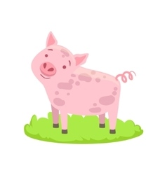 Pig farm animal cartoon farm related element on vector