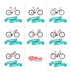 Bikes of the world vector