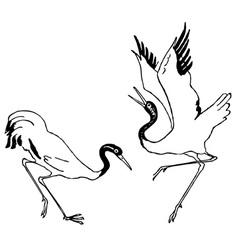 crane birds vector image vector image