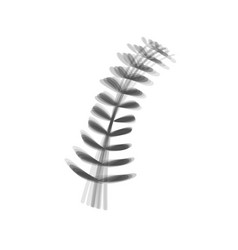 Olive twig sign gray icon shaked at white vector