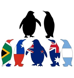 Penguin flags vector image vector image