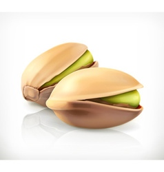 Pistachio nuts icon vector image