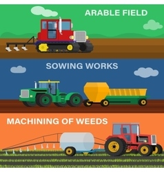 Process seeding growing and care vector
