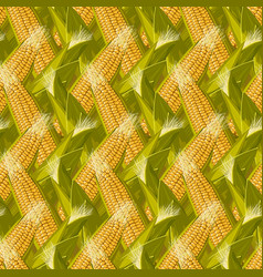 Corn maize seamless pattern realistic vector