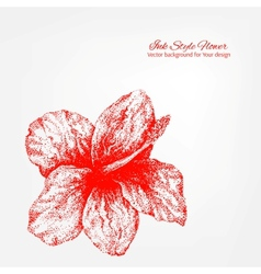 Elegant white and red floral card vector image vector image