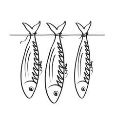 Sea roach stockfish vector
