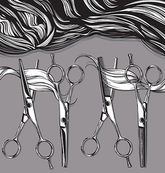 Chrome professional scissors for hairdressers vector