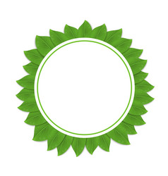round green frame with leaves vector image