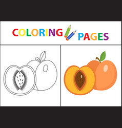 coloring book page sketch outline and color vector image vector image