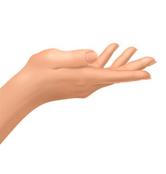 female hand open to hold an object vector image vector image