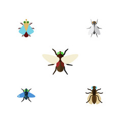 Flat icon fly set of dung tiny bluebottle and vector