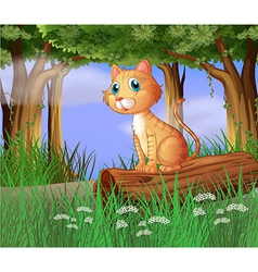 A cat in a forest vector