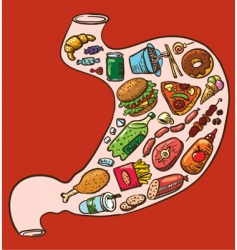 Stomach full of fast food vector
