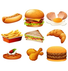 Different kind of fastfood vector image