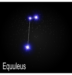 Equuleus constellation with beautiful bright stars vector
