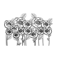 Rose flowers icon image vector