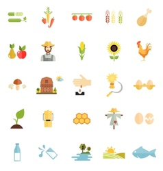 Variety flat style farm organic food icon vector