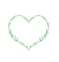 White yarrow flowers in a heart shape frame vector