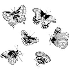graphic image of exotic butterflies in cartoon vector image vector image