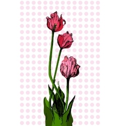 Hand drawn bouqet of tulip vector image vector image