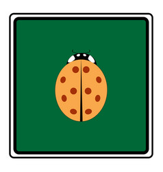 Ladybird isolated vector