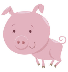 Piglet farm animal character vector
