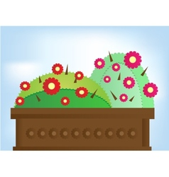 Two cactus with flowers vector