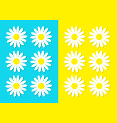 white daisy chamomile icon set cute flower plant vector image vector image