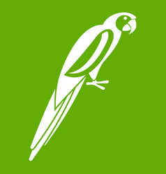 Parrot icon green vector