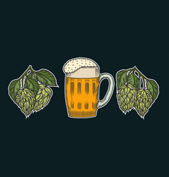 beer glass mug with hop vector image