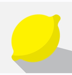 Yellow lemon and long shadow vector