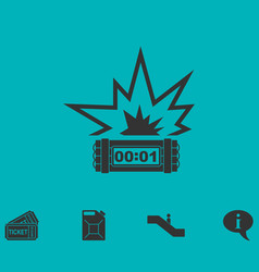 Big bang flash icon flat vector
