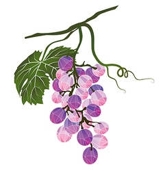 Bunch of grapes stylized polygonal vector