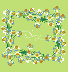 frame white daffodils spring vector image vector image