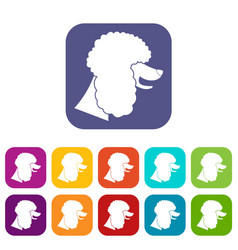 Poodle dog icons set vector