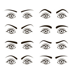 Different type woman black eyebrows set vector
