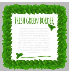 Fresh leaves green frame template vector image