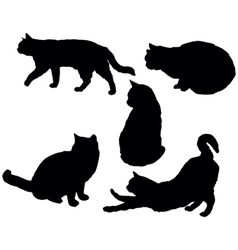 Posing cats vector