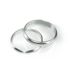 Pair of silver wedding rings vector image
