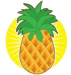 Pineapple sun vector