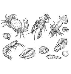 marine healthy seafood vector image