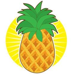 pineapple sun vector image vector image