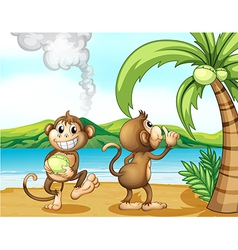 Two monkeys at the beach vector image