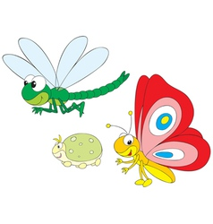 dragonfly greenfly and butterfly vector image