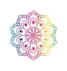 Spectral flower mandala over white vector